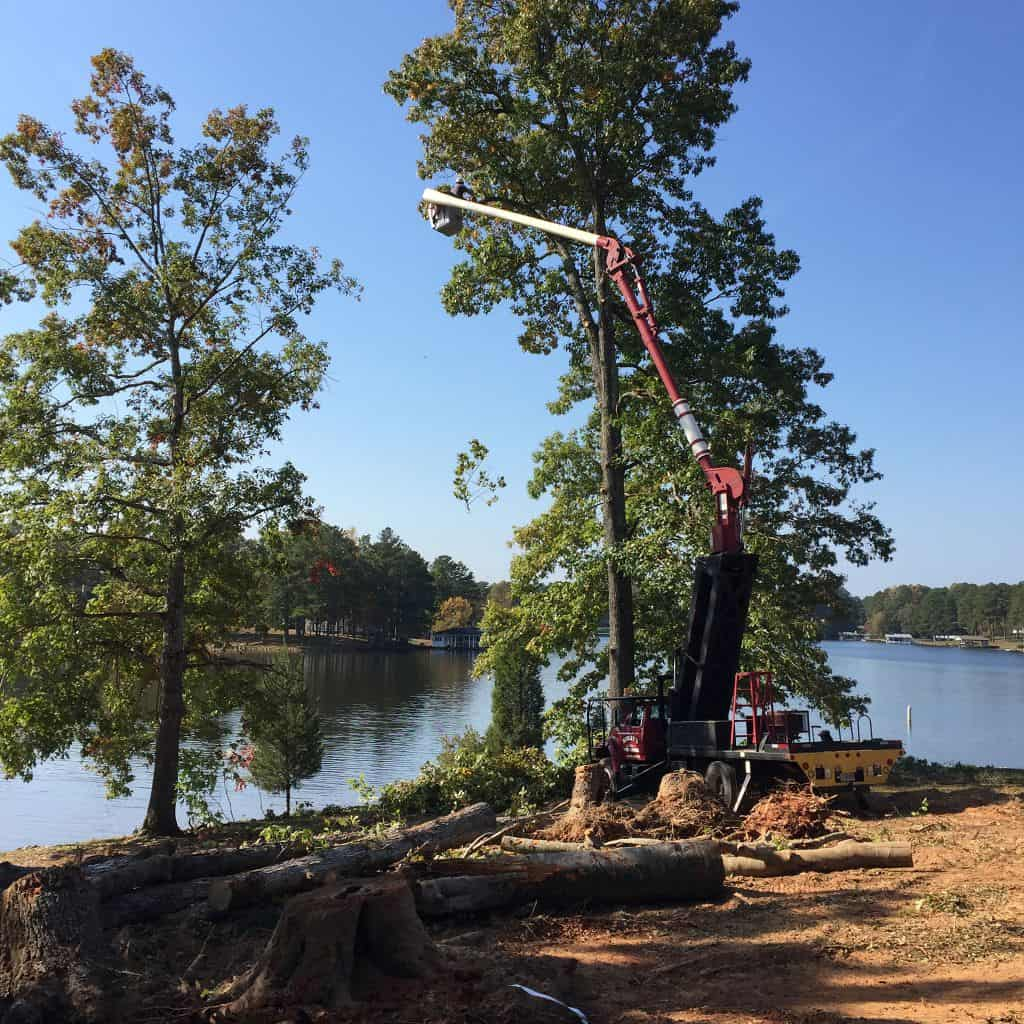 Tree Trimming Lake House